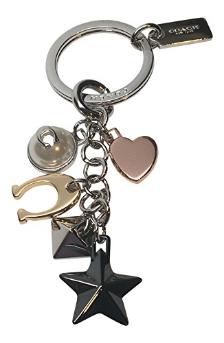 Charm Key Fob (COACH Stardust Multi-Mix Bag Charm Key Fob Chain 21397)