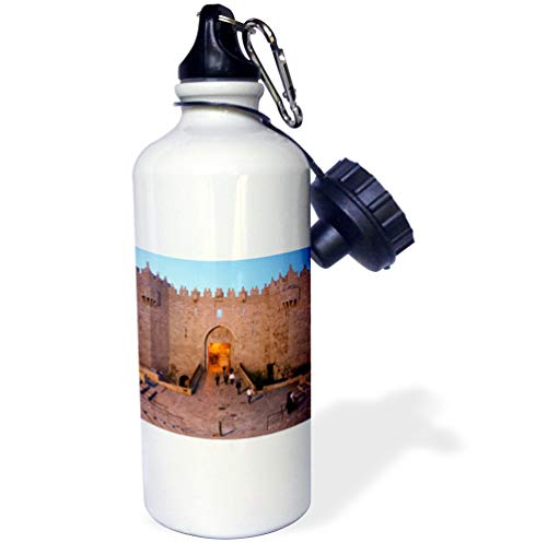 3dRose Edmond Hogge Jr - Countrys - Gates of Damascus - 21 oz Sports Water Bottle (wb_214674_1)