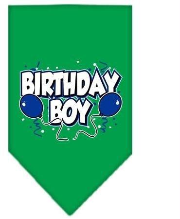 Birthday Boy Screen Print Bandana Emerald Green Small Case Pack 24 Birthday B... by DSD