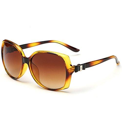 SnikFish-Elegant-UV-Female-Models-Sunglasses-Large-Frame-Bows-Sunglasses