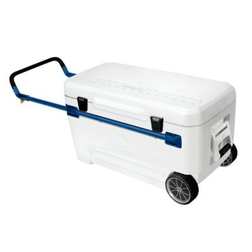 Blue Igloo (Igloo Glide Marine Ultra Cooler (White/Blue, 110-Quart))