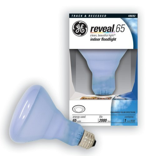 Reveal 65 Watt Flood Light in US - 6