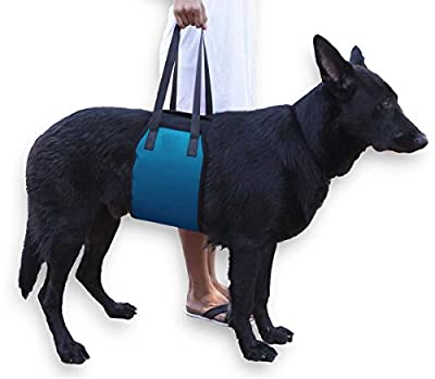 Blue Dog Lift Support Harness for canine aid - Lifting Older K9 with handle for Injuries, Arthritis or Weak hind legs & Joints. Medium and Large breed Assist Sling for mobility & Rehabilitation