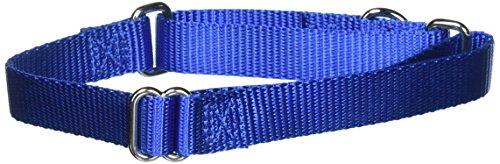 "PetSafe Martingale Collar, 3/4"" Medium, Royal Blue"