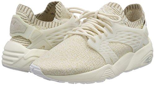 Blaze Evoknit Damen Sneaker Cage Puma dPw7q0dB