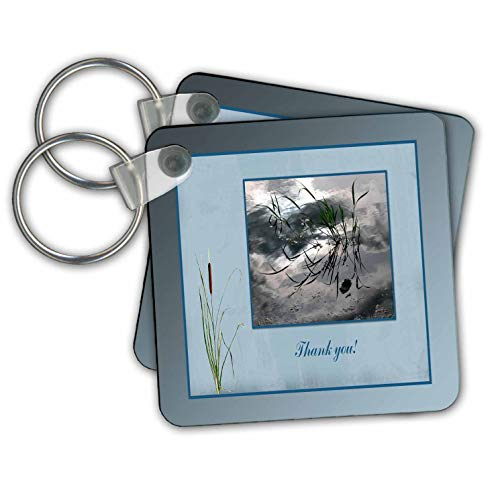 Beverly Turner Thank you Design - Thank you, Frog in a Pond Photo, Cattails Accent, Blue Frame - Key Chains - set of 2 Key Chains (kc_286999_1)