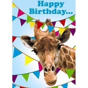 Happy birthday giraffe 3d holographic greetings card amazon happy birthday giraffe 3d holographic greetings card m4hsunfo