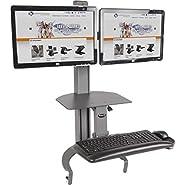 HealthPostures TaskMate Go Dual 6350 Adjustable Assisted Lift Standing Desk