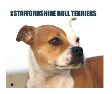 - Just Staffordshire Bull Terriers 2011 Wall Calendar By Willow Creek Press [Size: 11