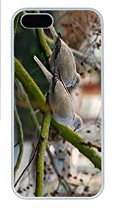 Hot iPhone 5S Customized Unique Print Design Pigeons 2 New Fashion PC White iPhone 5/5S Cases