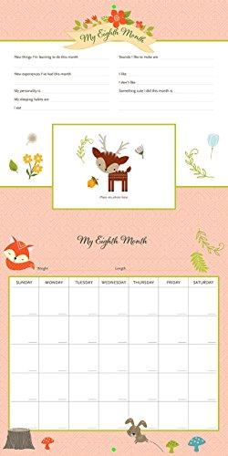 My Life as a Baby: A First-Year Calendar (Woodland Friends)
