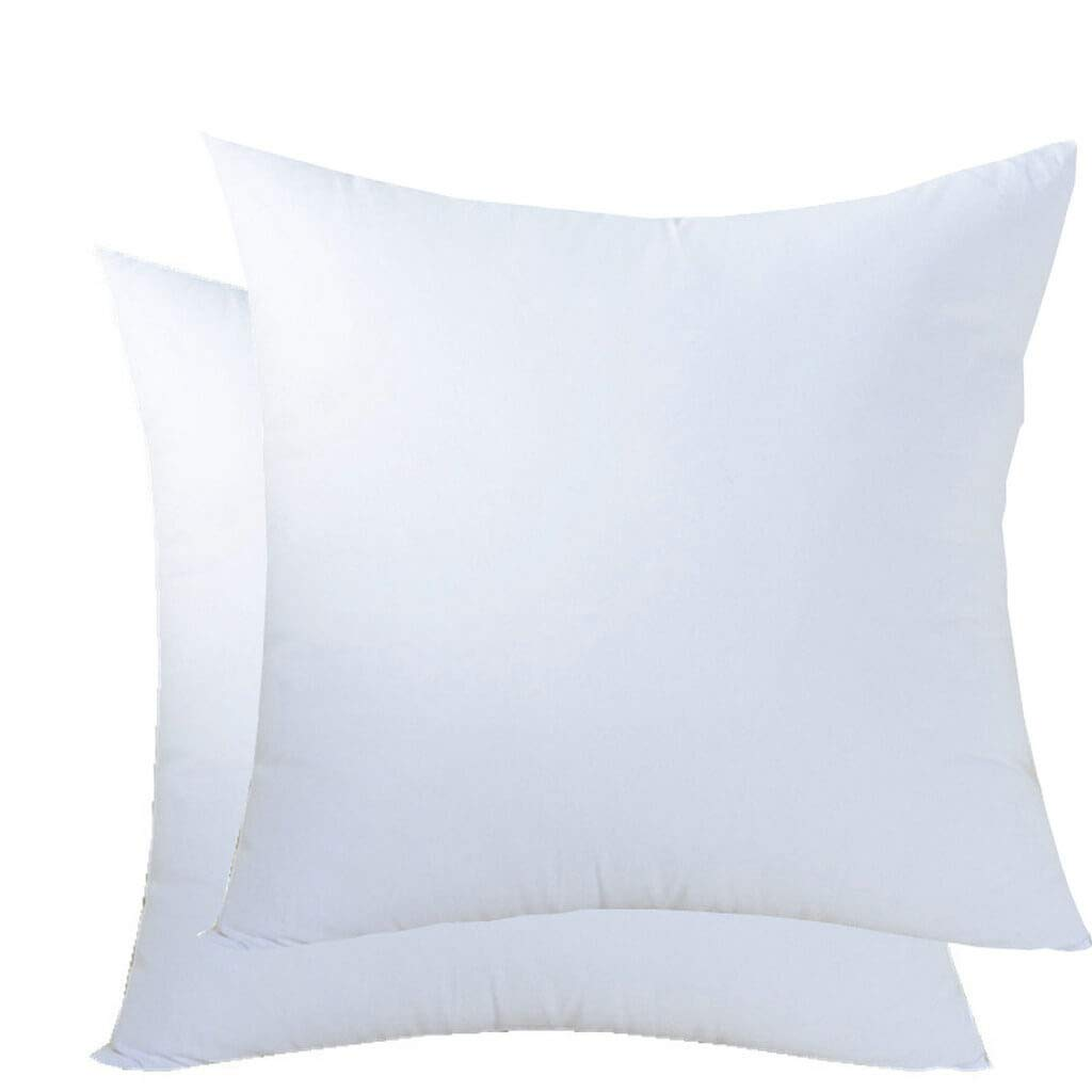 Aiwendish Square Throw Pillow Inserts 22 X 22 Pack of 2 Hypoallergenic Down Alternative Filler Form Cushion for Decorative,White