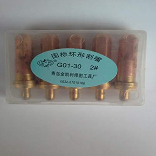 HoganeyVan 500 W Antorcha de soldadura de temperatura ajustable Pistola de aire caliente el/éctrica Pistola de calor universal Soldadura port/átil Suministros de soldadura