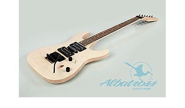 Albatross guitarras | madera maciza de caoba chapa de cuerpo de arce | perno en el cuello | DIY Kit de guitarra eléctrica G835: Amazon.es: Instrumentos ...