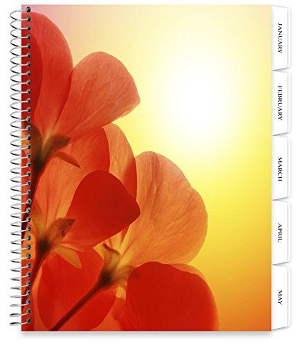 Tools4Wisdom Planners 2018 Planner - 8.5 x 11 Softcover - Dated 2018 Calendar Year - Daily Weekly Monthly Yearly Day Planner (Spiral Bound with Tabs - Red Flowers (Softcover Daily Planner)
