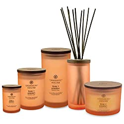 Chesapeake Bay Candle Mind & Body Large Scente