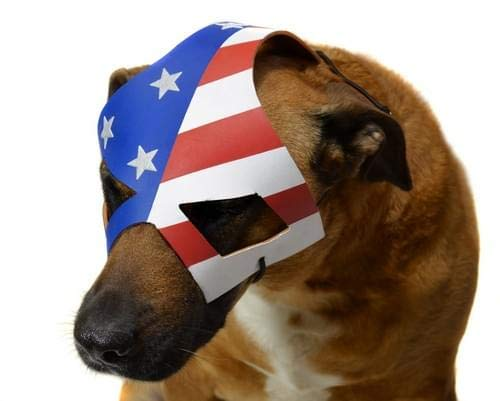KickAss 2 Eisenhower's Dog Costume Mask]()