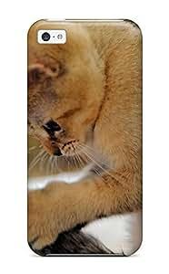 meilz aiaiTheodore J. Smith's Shop Best Fashion Tpu Case For ipod touch 4- Scottish_shorthair_kitten Defender Case Covermeilz aiai