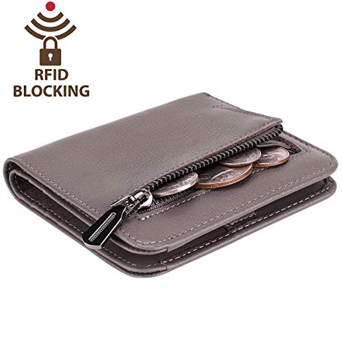 Area Trim License (Itslife Women's Rfid Blocking Small Compact Bifold Leather Pocket Wallet Ladies Mini Purse with id Window (Natural Gray))