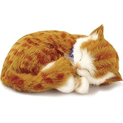 Perfect Petzzz Orange Tabby Kitten: Home & Kitchen