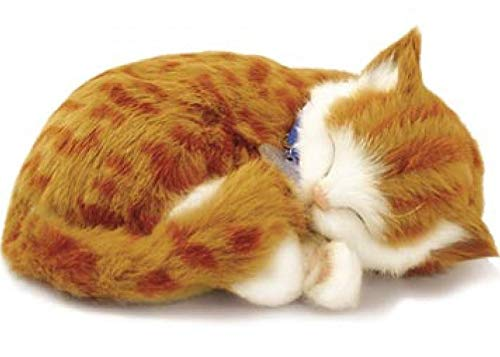 Perfect Petzzz Orange Tabby Soft Toy