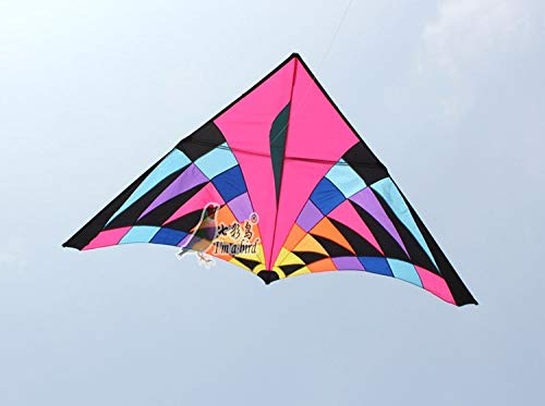 AMLJM Free Shipping Outdoor Fun Sports Nylon Power Triangle Kite Good Flying
