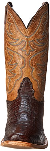Chocolate Boot Nocona Men's Caiman L Western Toe Boots 40Fwq7