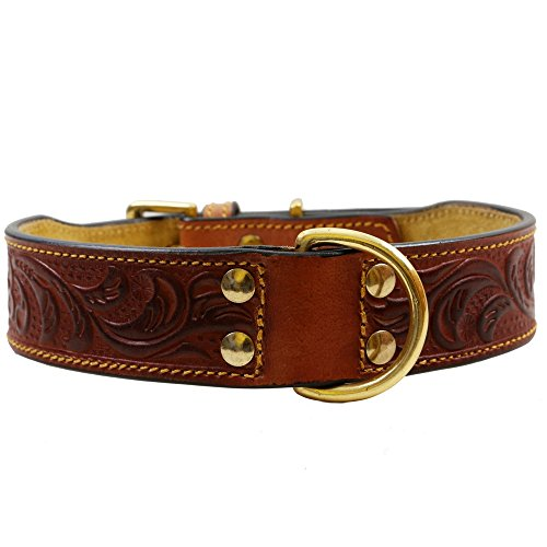 PetSutra Leather Dog Collar – Adjustable Premium Handmade Fashion Collar Embossed, - Dog Collar Fashion