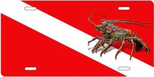 (A-Plus Marine New Aluminum Scuba Diving License Plate - Florida Lobster on Red & White Dive)