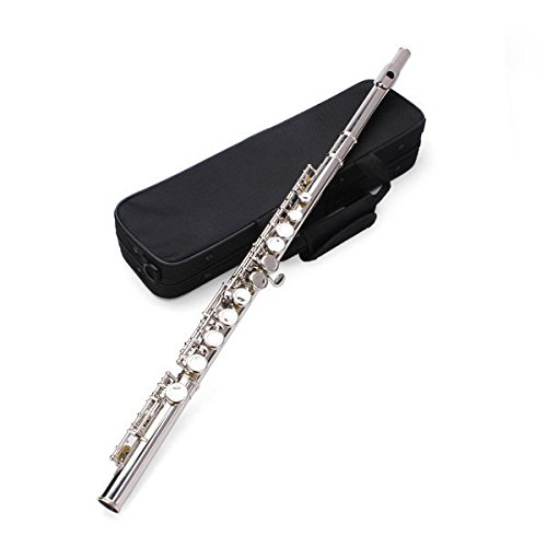 New LADE Silver Plated 16 Closed Holes C Key Flute by SOUND HOUSE 21
