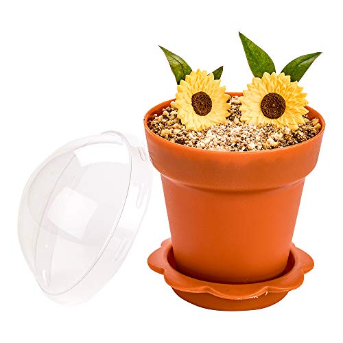 Restaurantware RWP0443BR 6 oz Terracotta Plastic Mini Flower Pot Cup with Lid 3