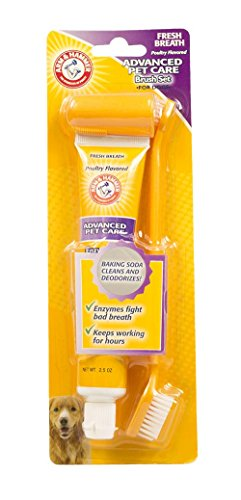 Arm & Hammer Advanced Care Fresh Breath Toothpaste & Toothbrush Set for Dogs in Chicken Flavor, 2.5 Ounces