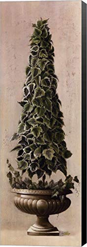 Florentine Topiary l by Welby Canvas Art Wall Picture, Museum Wrapped with Black Sides, 12 x 36 ()