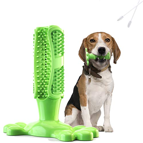 Fansun Dog Toothbrush Chew Toy for Medium Dog, Dental Care Brushing Stick Teeth Cleaner, Non-Toxic Natural Rubber Bite Resistant, 2 Bonus Cleaning Brush, Green