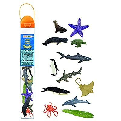 Safari Ltd Ocean TOOB  Comes With 12 Different Hand Painted Animal Toy Figurine Models  Including Sea Lion, Eagle Ray, Starfish, Turtle, Penguin, Octopus, Humpback Whale, Sperm Whale, Moray Eel, Hammerhead Shark, Tiger Shark,