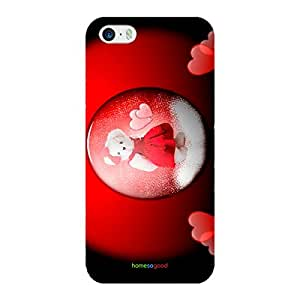 HomeSoGood Lovely Teddy Multicolor 3D Mobile Case For iPhone 5 / 5S (Back Cover)