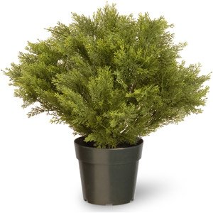 National Tree 24 Inch Globe Juniper Plant in Green Pot (LCB4-24-1) (Pine Pot Artificial)