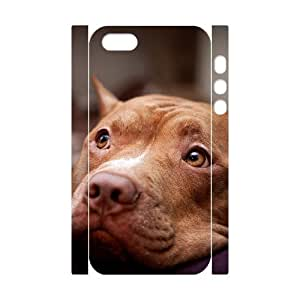 GTROCG Pit Bull Terrier Pattern Phone Case For iPhone 5,5S [Pattern-1]