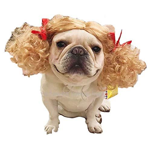 견 용가 발가 발가 발 아에 금발이 모자 할로윈 【 모자 화장 かぶりもの 】 / Dog Wig Wig Wig Girl Blonde Cap Halloween [Hat Makeover Cove