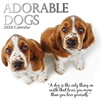 Adorable Dogs: 2020 Square Wall Calendar