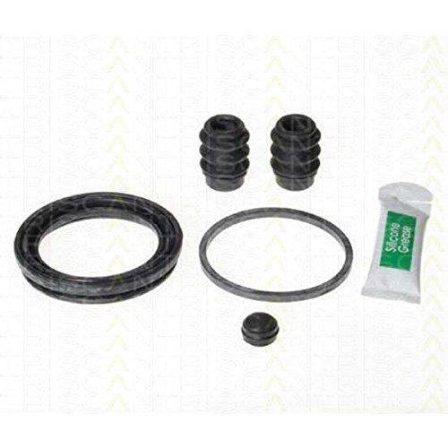 Triscan 8170 205735 Kit de reparación, pinza de freno: Amazon.es: Coche y moto