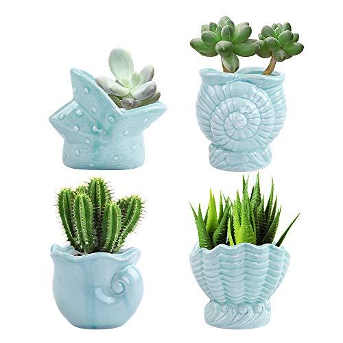 LUCKEGO 3.15 Inch Ceramic Succulent Pot,Cute Ocean Blue Seashell Series,Conch Shaped Cactus Pot Planter, Flower Pot, Pottery Bonsai Pot,Ceramic Flowing Glaze Base Serial Set,Pot with A Hole(4 in Set) ()