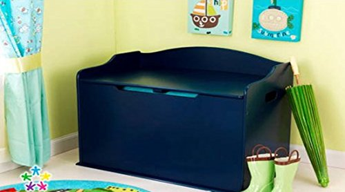 Blueberry Functional Toy Box, Safety Hinge on Lid Protects Young Fingers from Getting Pinched, Made of Wood, Doubles as a Bench for Additional Seating, Bundle with Expert Guide for Better Life by Home X Style
