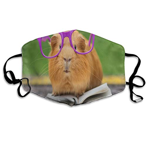 Dust Mask Fun Guinea Pig Reading Book Fashion Anti-dust Reusable Cotton Comfy Breathable Safety Mouth Masks Half Face Mask for Women Man Running Cycling Outdoor