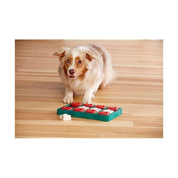 Outward Hound Nina Ottosson Puzzle Brick Dog Toy 6