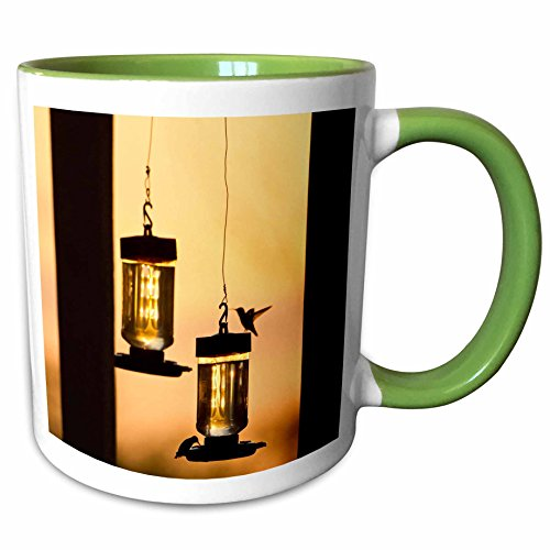 3dRose Danita Delimont - Birds - Hummingbirds at feeder before sunrise, Texas, USA - US44 LDI0953 - Larry Ditto - 15oz Two-Tone Green Mug (mug_147052_12) (15 Ounce Hummingbird Feeder)