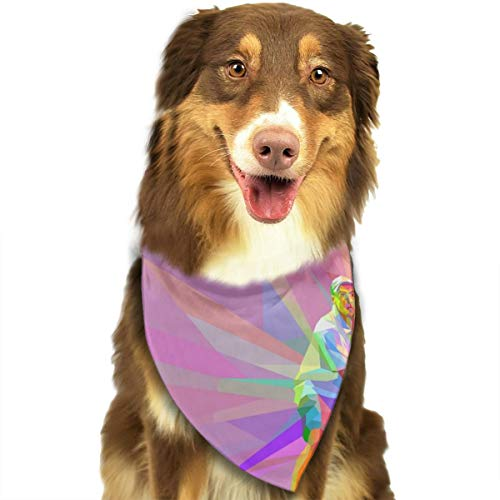 Pet Scarf Dog Bandana Bibs Triangle Head Scarfs Tennis Famouse Man Accessories for Cats Baby Puppy]()