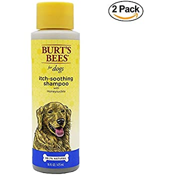 Pet Shower And Bath Supplies : Amazon.com: Burt's Bees for