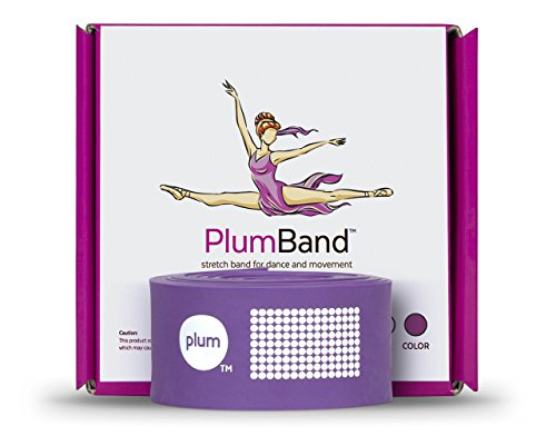 The PlumBand Stretch Band for Dance and Ballet – Colors and Sizes for Kids & Adults – Improve Your Splits, Strength, and Flexibility - Printed Instruction Booklet and Travel Bag (Plum Purple, Regular)