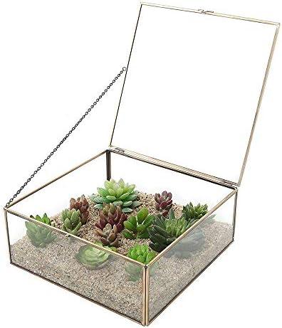 ChengBeautiful Terrarium Sukkulente Luft Display-Glas Kristallkugel Hochzeit Dekorative Blumentöpfe (Color : Gold, Size : 20X20X8.5cm)